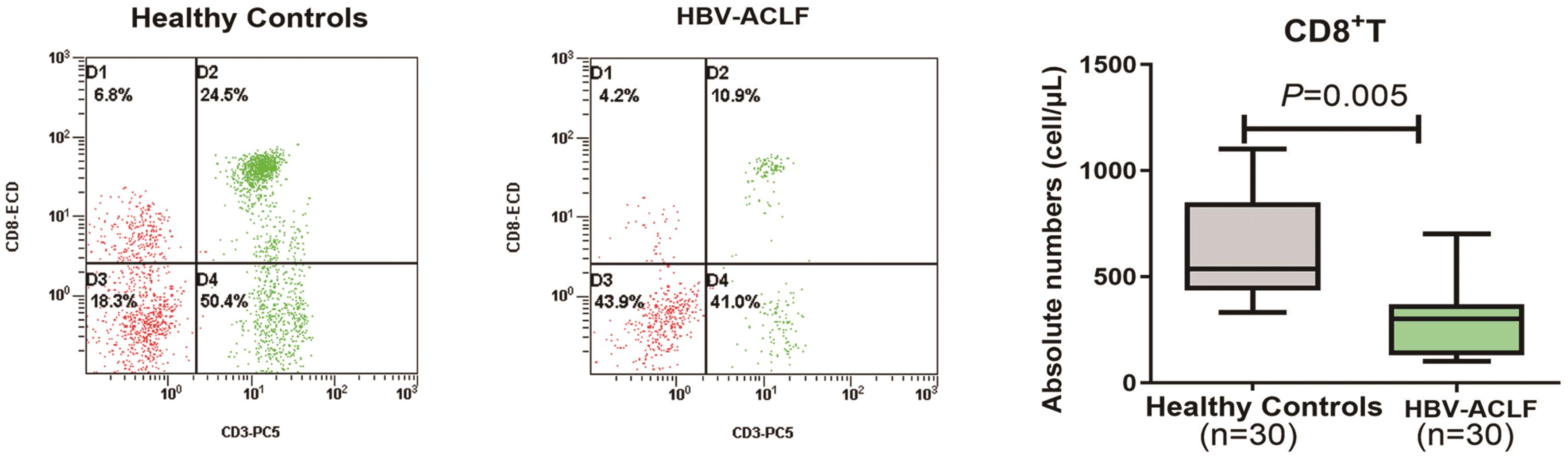 Proportion and absolute numbers of peripheral CD8<sup>+</sup> T cells in patients with HBV- ACLF and HCs.