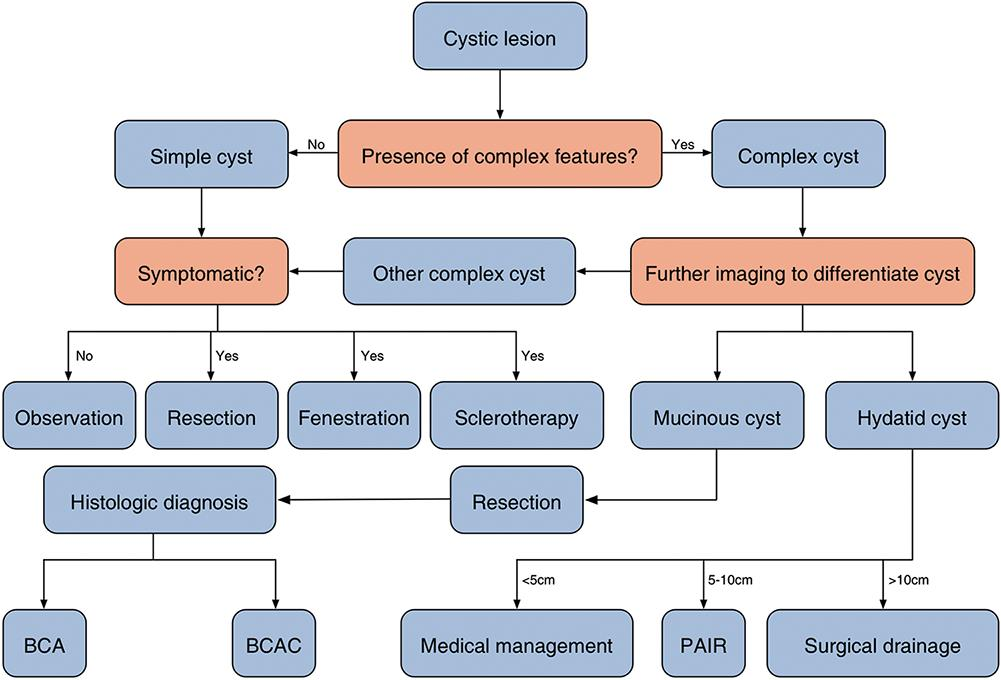 Diagnostic and management strategies.
