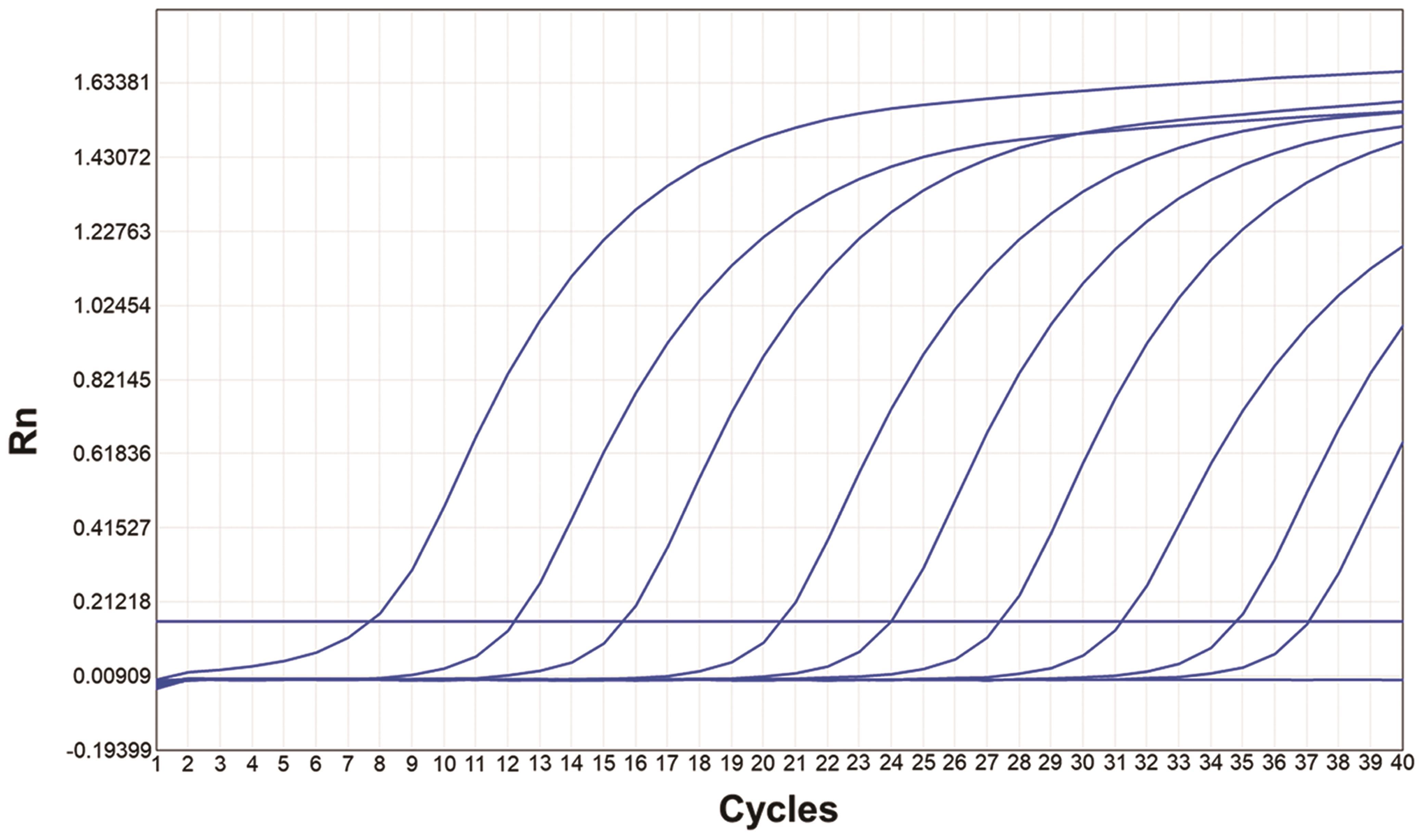 Amplification curves of plasmids.