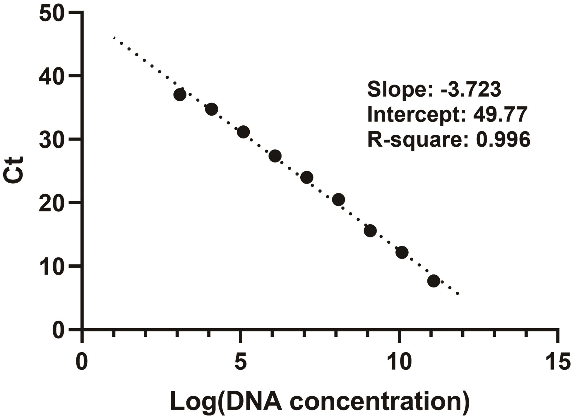 Linear relationship between Ct values and log DNA concentrations.