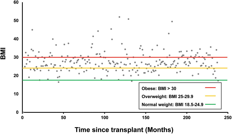 Body mass index since liver transplantation.