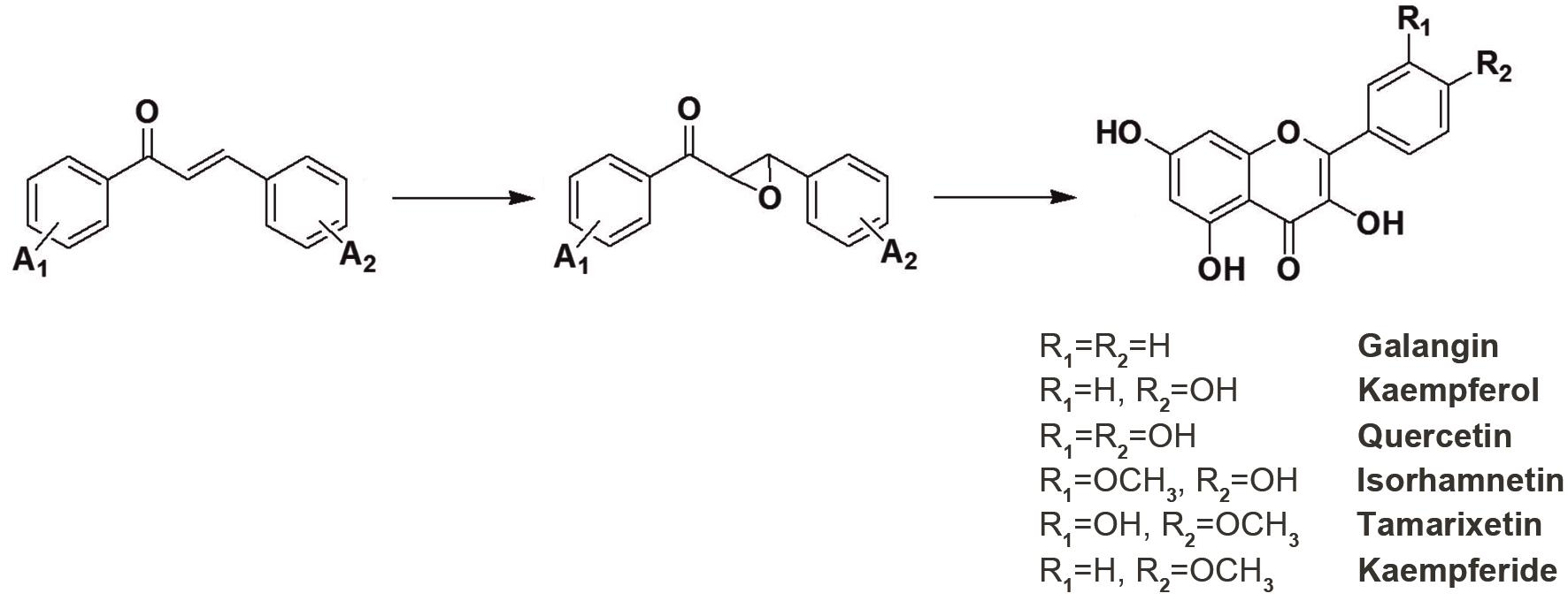 Synthesis of flavonols.