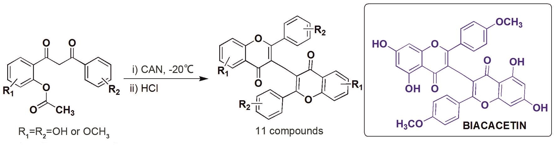One pot synthesis of (I-3, II-3)-biflavones.