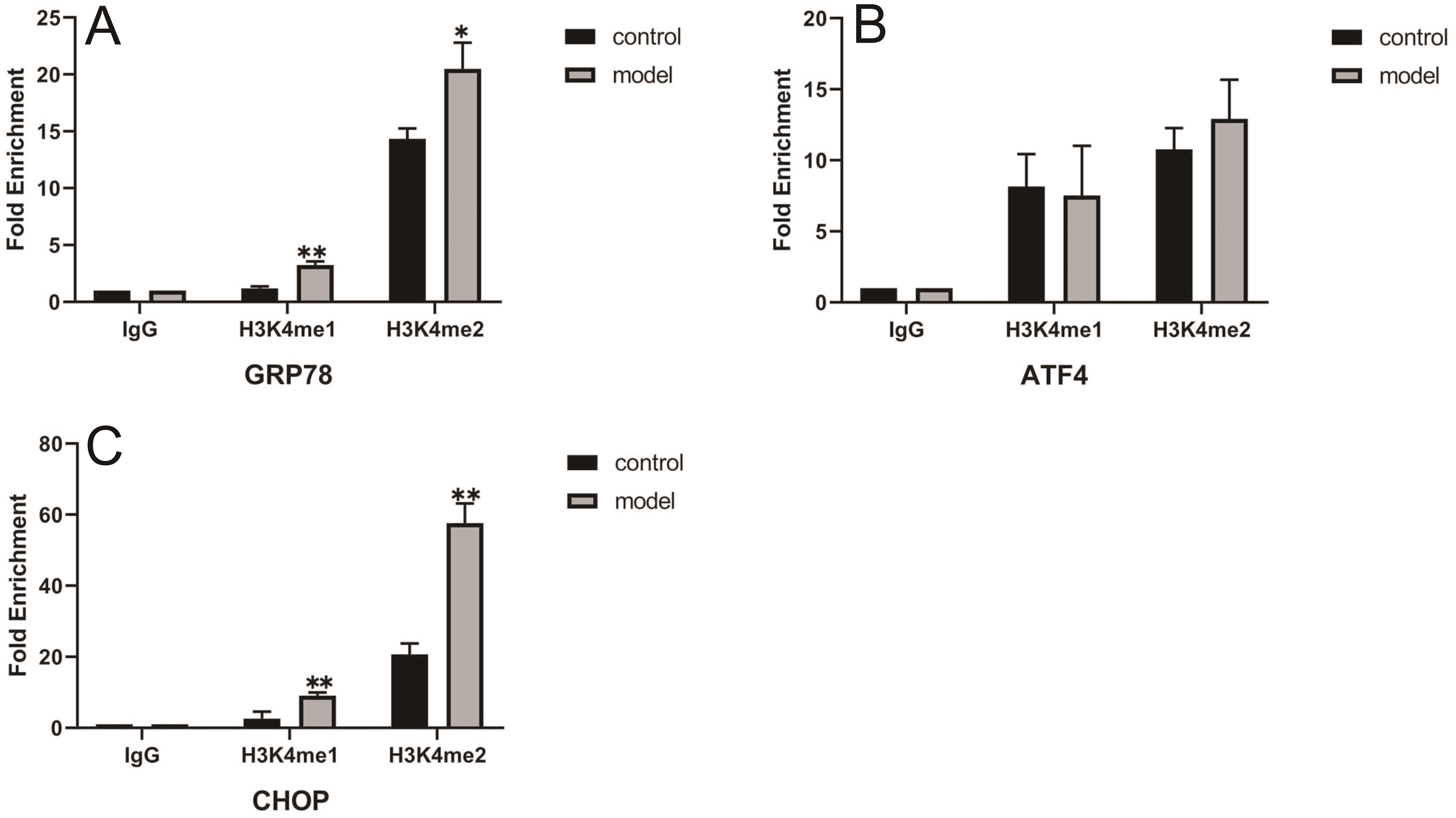 Effect of H3K4me1 and H3K4me2 on GRP78, ATF4, and CHOP promoter activity in L02 hepatocytes.