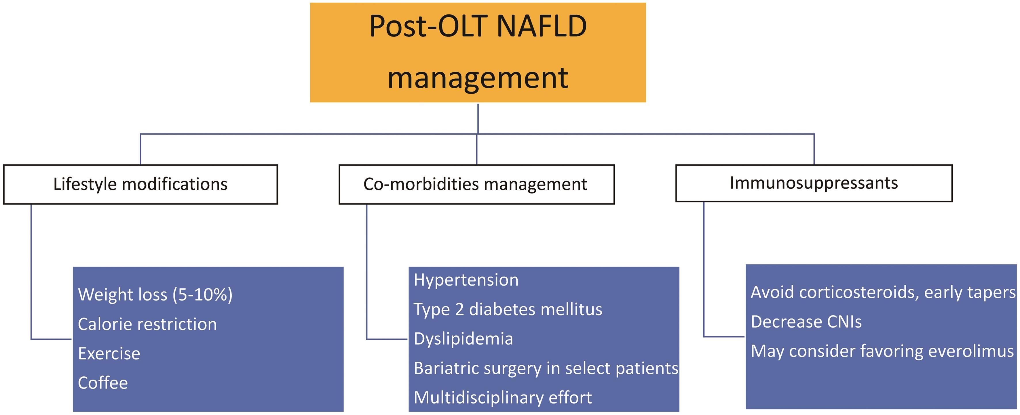 Management for post-liver transplant NAFLD.