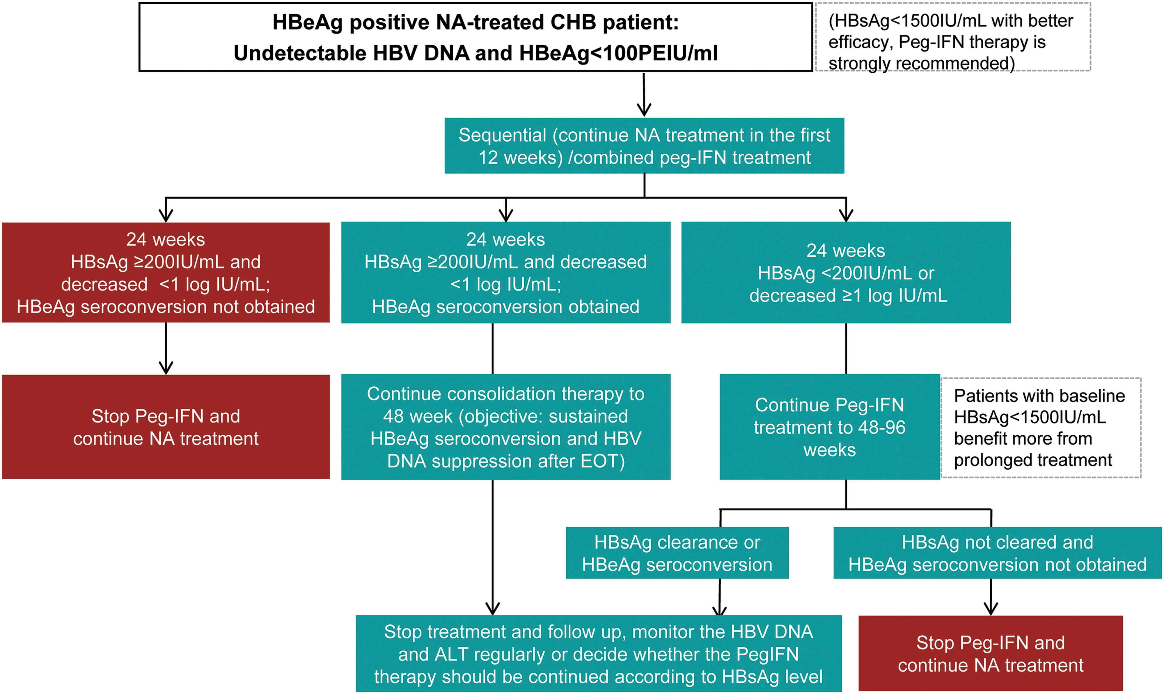 Adjustment during Peg-IFN treatment for NA-treated CHB patients.
